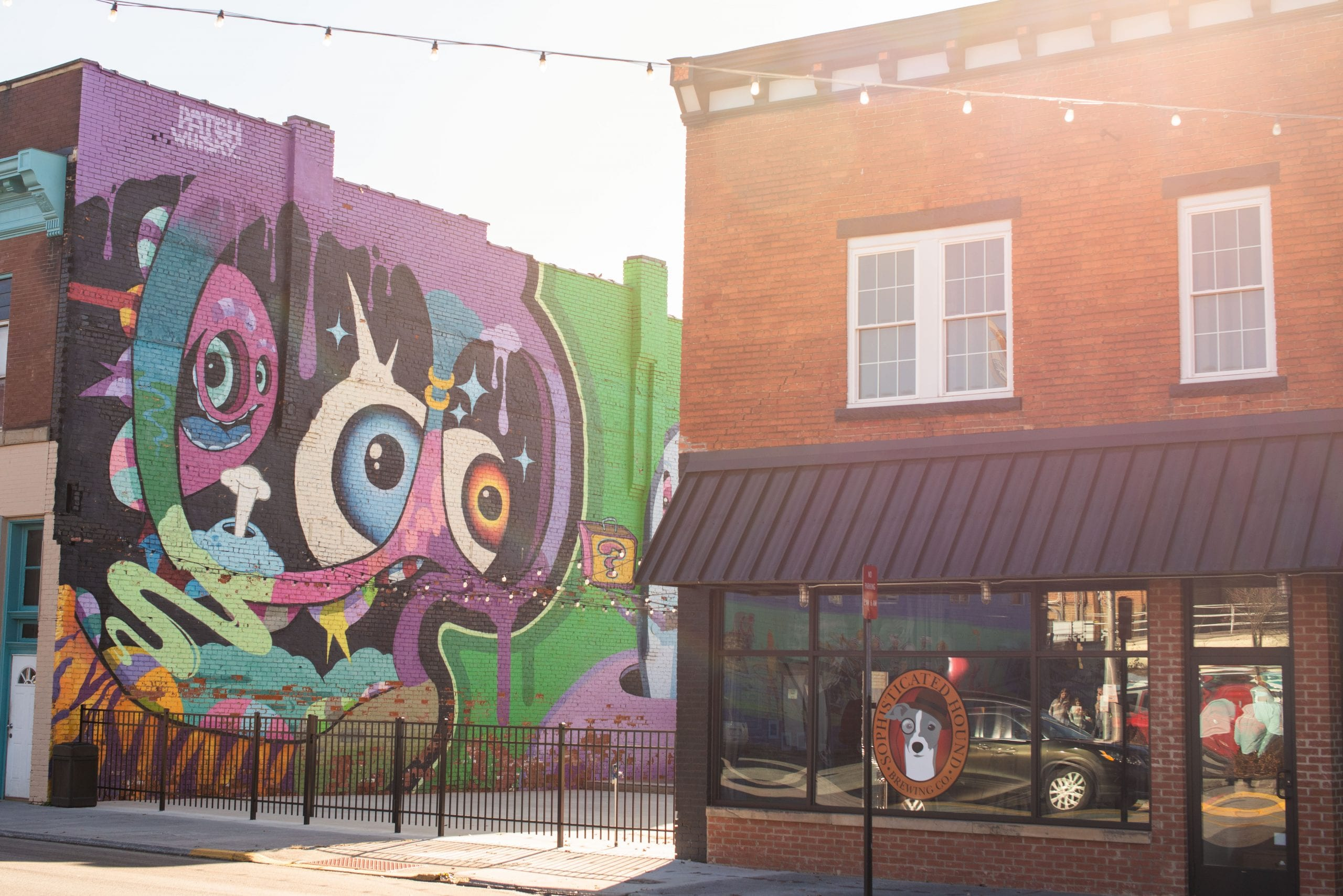 A shot we took of a Patch Whiskey mural beside Sophisticated Hound Brewing Company's storefront on Mercer Street in Princeton, WV.